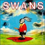 swans_white_light.jpg